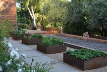 herb gardens / by Mary Henderson Maurel