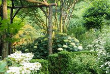 Gardens: Trellises, Arbors and Supports / by Susy Morris
