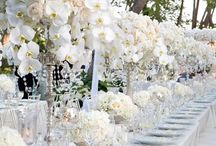 White Orchid Wedding  / by The American Wedding