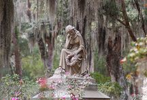 Beauty In The Cemetary / by Patti Taylor