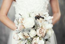 Mrs. Peterson / by Shauna Kelley