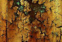 T e x t u r e s / by Katy fon Forest