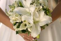 wedding / by Miriam Ledford