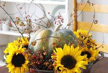 Country Decor - Fall, Winter / by Marcia Hron