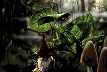 My Little Gnomes / by Amethyst Ways Nikki Ardolino