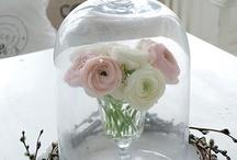 Flowers / by Rebecca Green