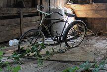 abandoned / by Virginia Mestyanek