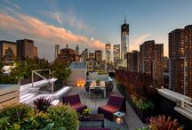 Serendipity... Roof Top / Great gardens can happen anywhere / by Serendipity Garden Designs