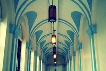 Immaculata College / by Michelle Davis