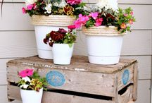 Outdoor living / by Jess - Frugal with a Flourish