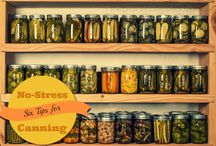 Canning and Preserving / by Cheryl Mitchell