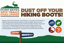 Take the Point Reyes Trail Challenge!                                                  / Get fit this summer at Point Reyes National Seashore and help raise funds for park trails!   Take the 2013 Challenge: Register as a individual or team and ride, walk, hike or run 25, 50, 75 or 150 miles of park trails this summer June 1- October 1 and discover the beauty of Point Reyes. Ask friends & family to sponsor your hike for health and help you raise funds for a Trail Trust. Donations are tax-deductible and benefit a Trails Trust for the park.  Learn more www.ptreyes.org Thank you! / by Point Reyes National Seashore Association