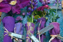 Purple / by Vanessa Robson
