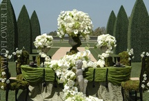 wedding / by Kathy Anderson