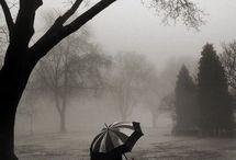 Rain <3 / by Norma Gonzalez