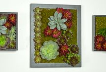 Artificial Wall Gardens / Using silk greenery, succulents, grasses to create beautiful wall art.   / by Artificial Plants & Trees for Commercial Use