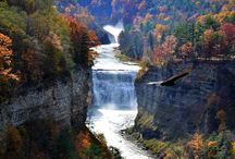Beauty of upstate New York / by Tammy Case