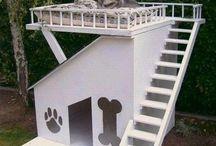 Dog  house/ items / by Veronica Velasquez