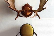 Antlers / by Rustic Wedding