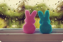 Easter - Hanging With My Peeps / Easter says you can put truth in a grave, but it won't stay there. / by Debbie Lunsford