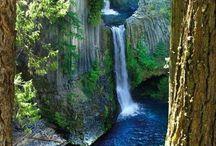 Love my Oregon!!! / by Julie Andersonpattydiane