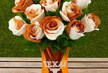 Longhorn Love / I heart UT! / by Dixie Selva