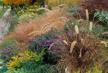 Gardening / by Alex Worthington