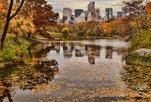 Amazing Autumn in NewYork  / by Cosmopolitan Hotel TriBeCa