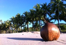 TRAVEL: Been there, done that, seen it... / Remembering my travels and experiences.  / by Aloha SanDiego