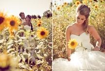 fairytale wedding / by Katherine Lovallo