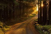 Roads / by T.J. Phillips