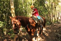 Bonanza Ranch / Bonanza Rancho Ecoturistico It is a place particularly designed in order that, people with little or no experience at horseback riding enjoy the experience of riding a horse. This safely and through a fascinating and characteristic landscape. / by Karisma Hotels & Resorts.