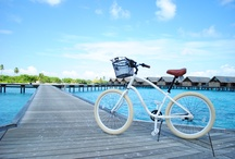 Escape in Paradise / Shangri-La's Villingili Resort and Spa, Maldives / by Shangri-La 's Villingili Resort & Spa, Maldives