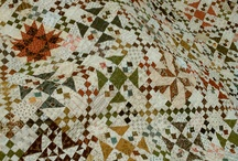 Quilt Interest / by B Southie