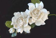 Gardenia's / Gardenia's / by Debbie Dellarocca