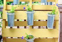 Garden Ideas / by Lynn Burgess