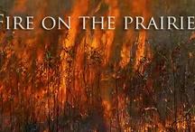 The Tallgrass Prairie / by Filmmaking Naturally