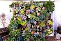 Garden Art and Decor / by Garden Design