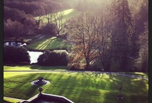 Christmas at Bovey Castle by the Cauderys / by BoveyCastle