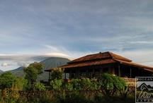 Safari Lodges / by Volcanoes Safaris