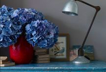 *My favorite ideas for my home* / by Tammy Schaffer Anderson