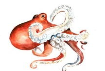 In An Octopus's Garden / by Lauren Malick