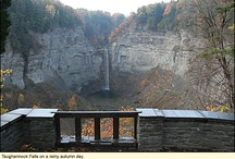 Taughannock Falls State Park / PARKS IN THE FINGER LAKES REGION OF NEW YORK  Taughannock Falls State Park is a 783-acre park in the Town of Ulysses in Tompkins County. Situated on the west shore of Cayuga Lake, the park offers a marina, boat launch, bathhouse, and beach for supervised swimming. Taughannock Creek runs through the park and has a number of falls, the most famous of which is Taughannock Falls with its 215-foot vertical drop, longer than that of Niagara Falls.   / by ILovetheFingerLakes