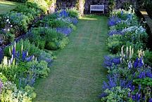 Landscaping Ideas / by LAWN-N-ORDER