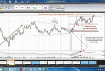 Excellent Trading Clips / by Francis Hunt