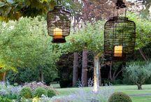Gardens / by oldsmocksnewfrocks