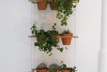 indoor gardens / by Mary Henderson Maurel