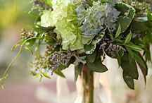 Wedding- green and gray / by Kelley Spence