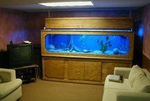 Fish tanks / by Jason Copeland