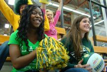 Seawolf Spirit / by UAA Campus Bookstore